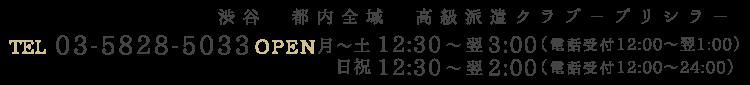 03-5828-503312:30~翌5時月~土 12:30~翌5:00(電話受付12:00~翌3:00)